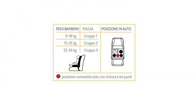Chicco Gro-up 123 9-36 kg